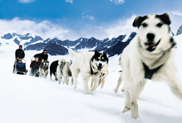 RCI_Alaska_Dogsledding_8-for-web-2