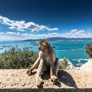 10 daagse cruise Door de Straat van Gibraltar10-daagse Vakantie naar 10 daagse cruise Door de Straat van Gibraltar in Andalusië