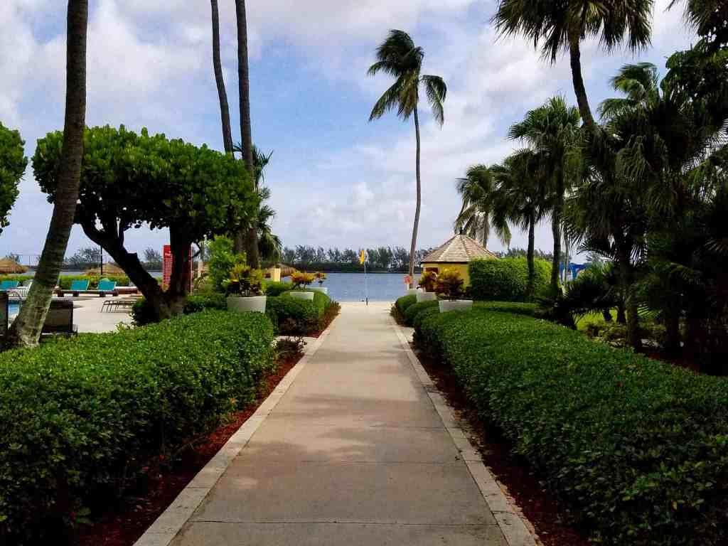 The beautifully landscaped walkway to the beach