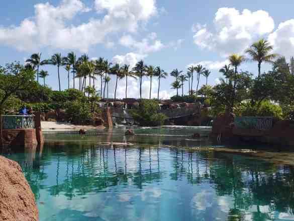 MSC Seaside Family Cruise: Day 7 - Nassau, Bahamas | 31