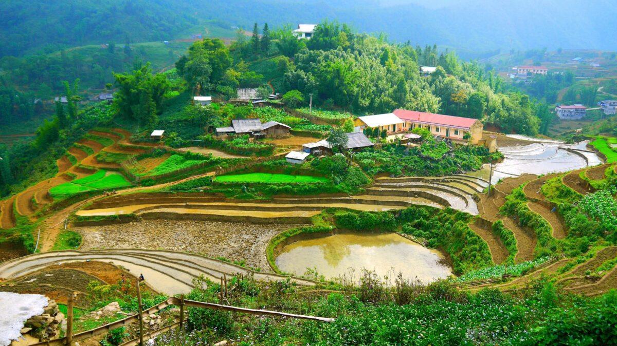 Smukt beliggende rismarker i det bjergrige Vietnam
