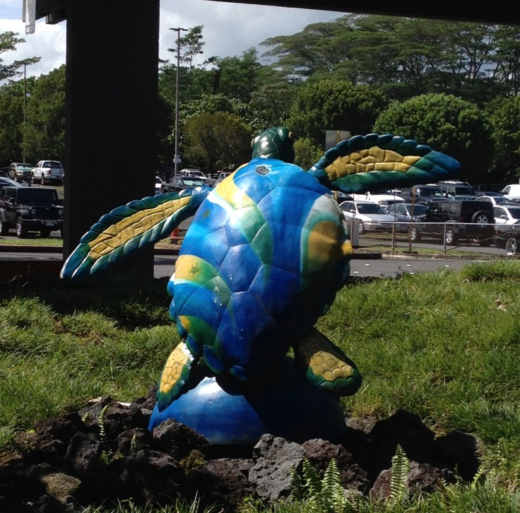 Hilo International airport