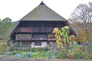 bf-farmhouse