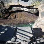 Thunderhole on Acadia Park