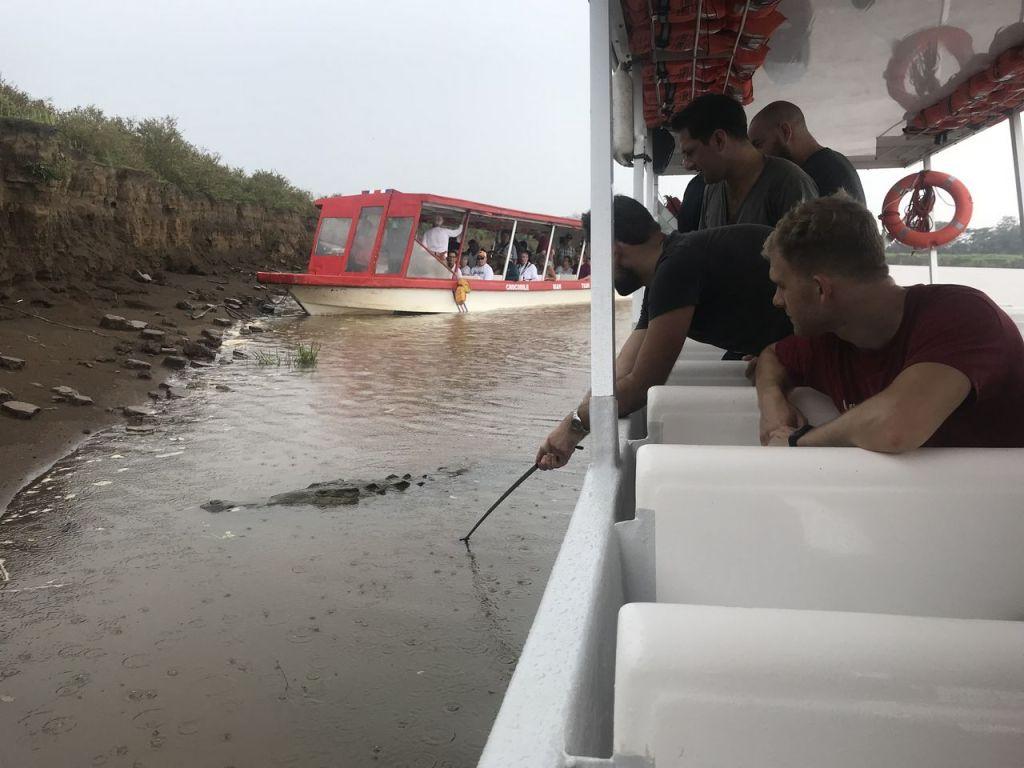 Viewing more crocs along the river