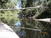 Kayaking on Waterpark Creek