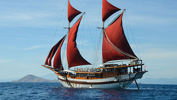The Liveaboard And Dive Specialists Cruising Indonesia
