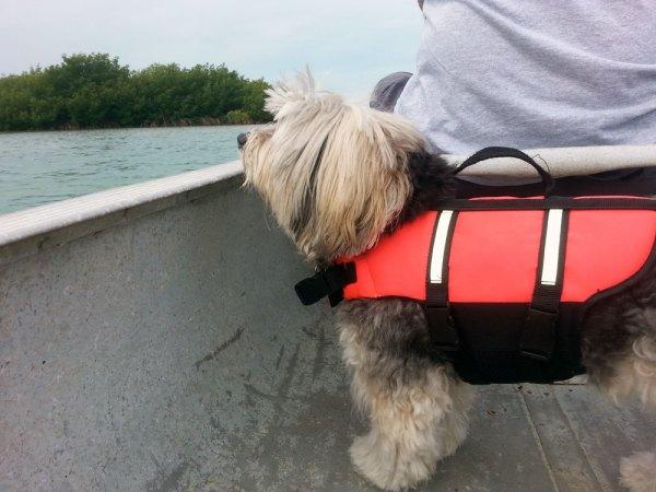 Demi loves riding in the canoe
