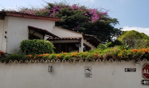 Antigua home