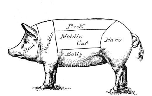 where does ham come from?