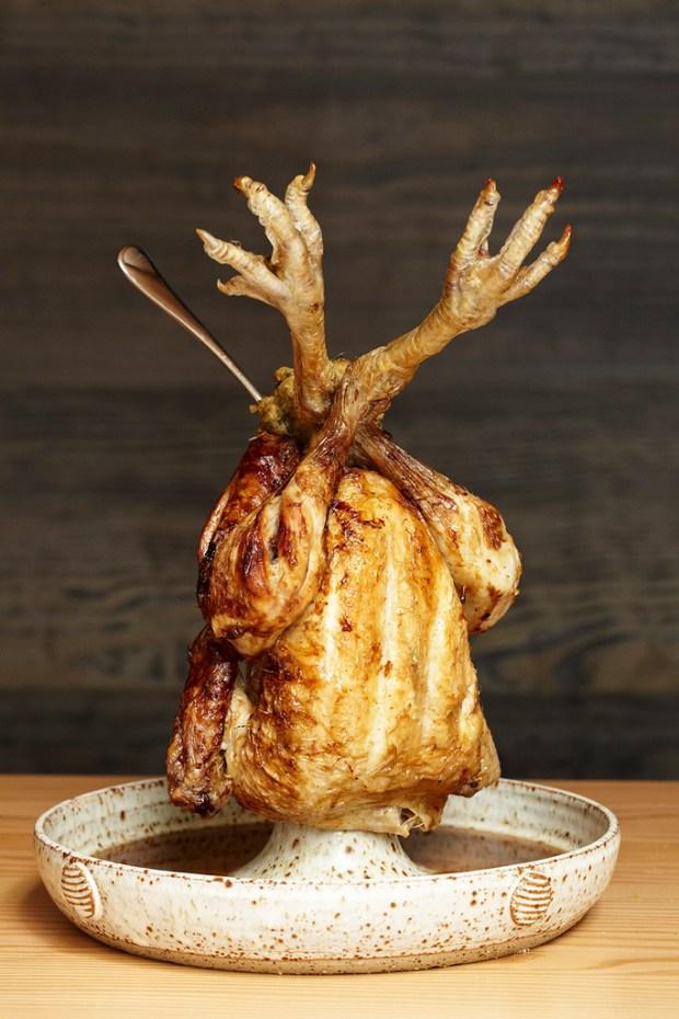 Chicken - Jason Lowe