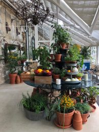 The Potting Shed at The Grove