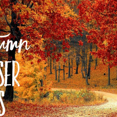 Top 5 Autumn Diffuser Blends