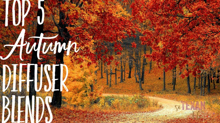 autumn diffuser blends