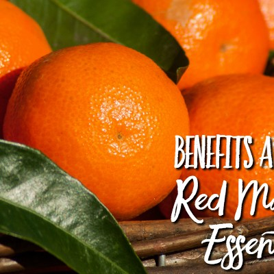 Red Mandarin Essential Oil– Benefits and Uses