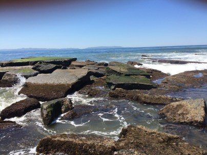 San Pedro Tide Pools