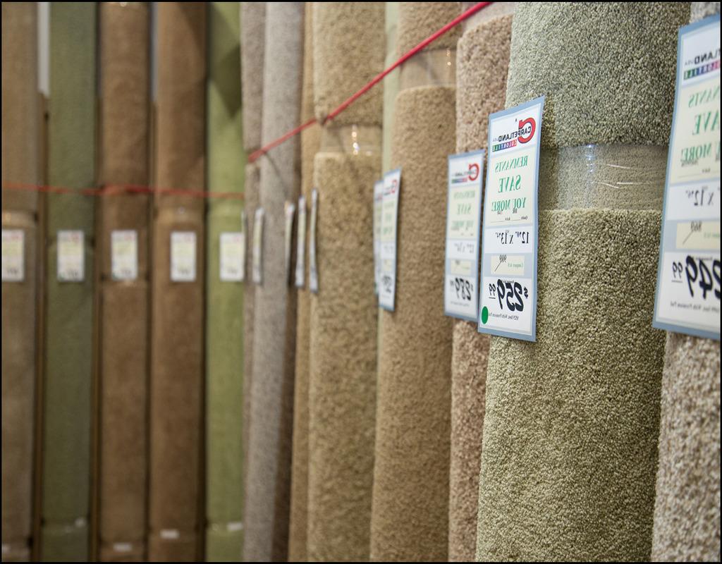 20 X 20 Carpet Remnant