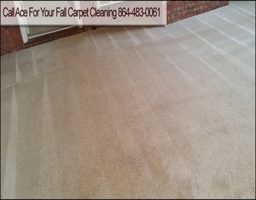 Carpet Cleaning In Anderson Sc