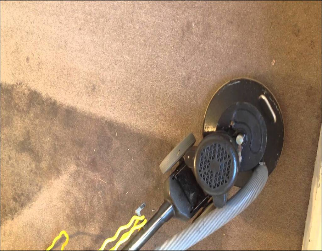 Carpet Cleaning Norfolk Virginia