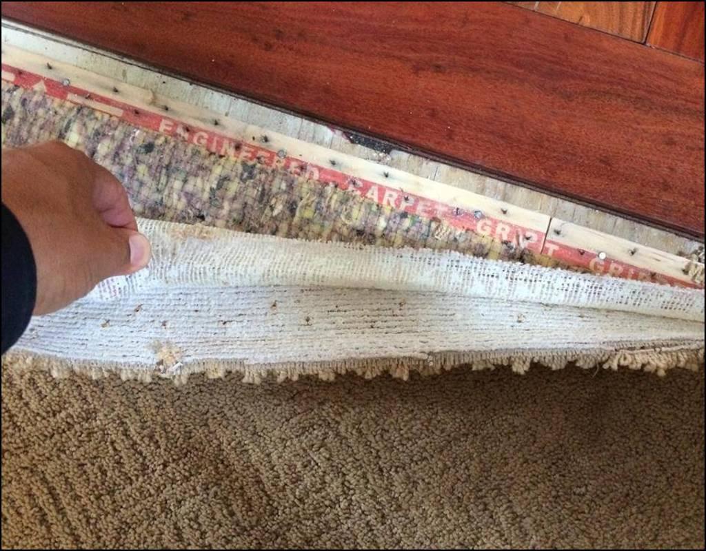 Carpet Pad In Basement