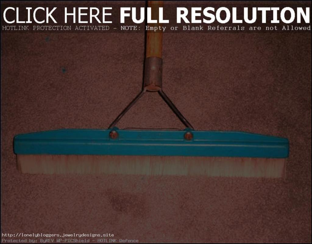 Carpet Rake Home Depot