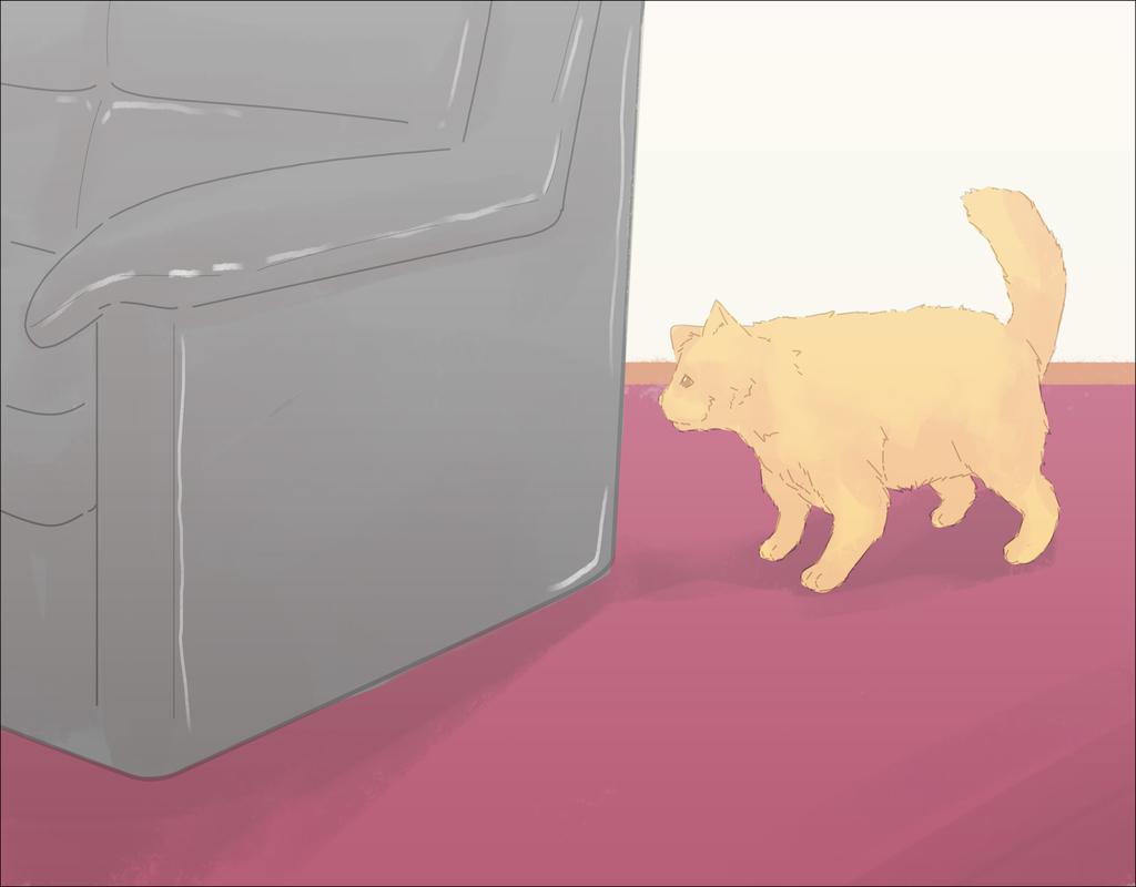 Deter Cat From Peeing On Carpet