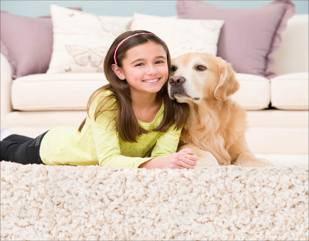 Is Chem Dry Carpet Cleaning Safe