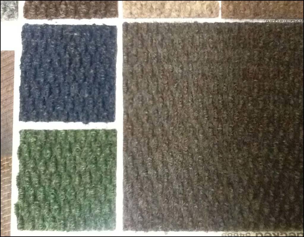 Shaw Indoor Outdoor Carpet