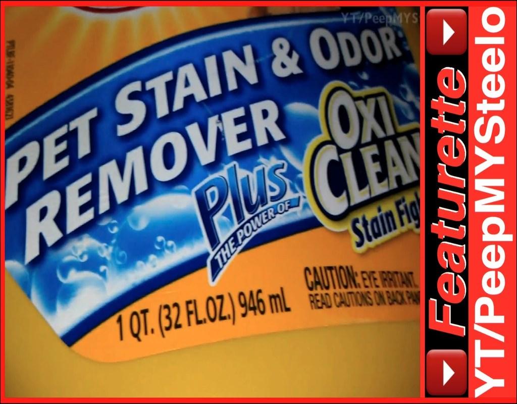 Best Carpet Shampoo For Dog Urine