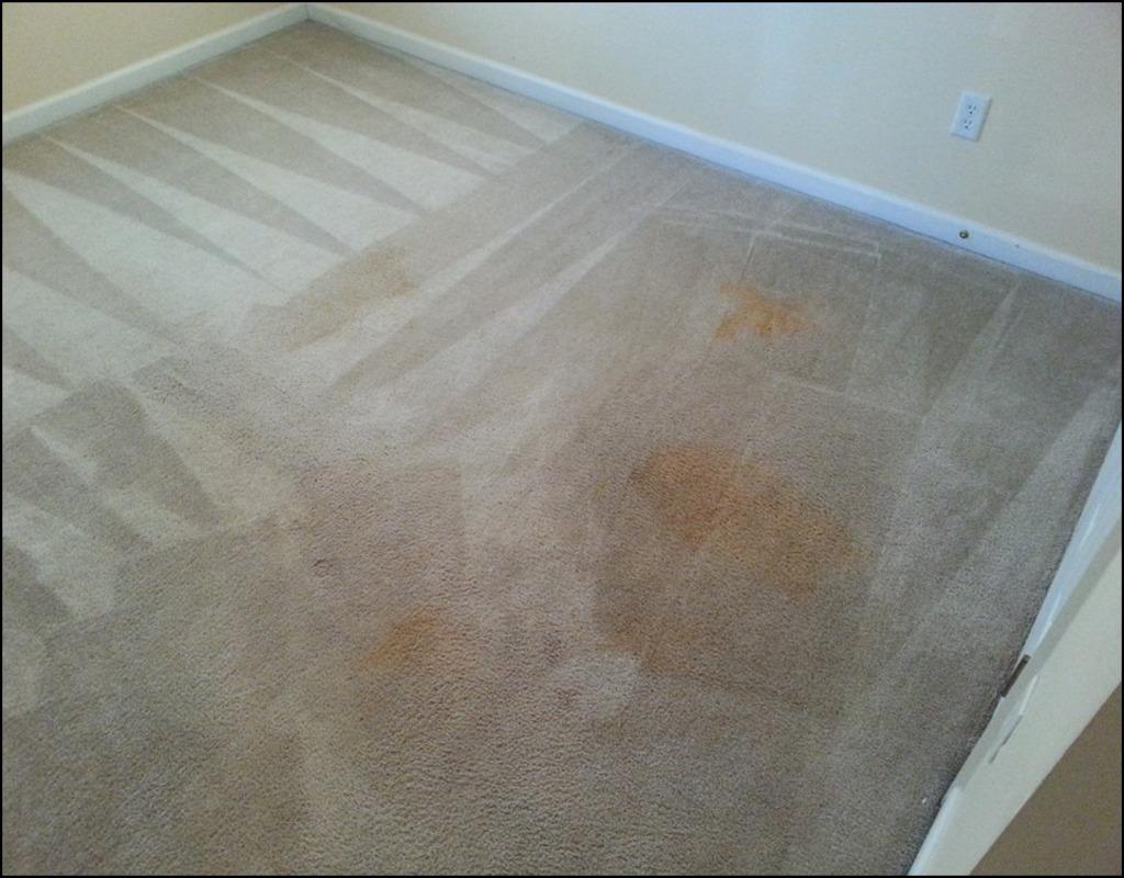 Mr Steam Carpet Cleaning