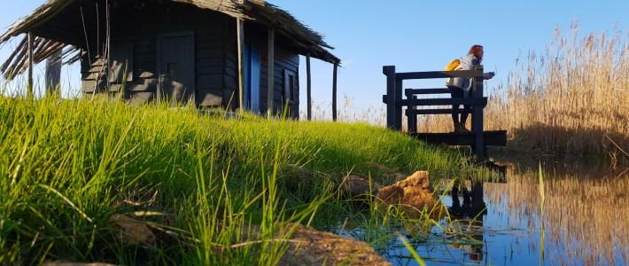 BioRia – Percurso de Salreu