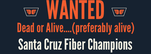 Wanted_FiberChamps