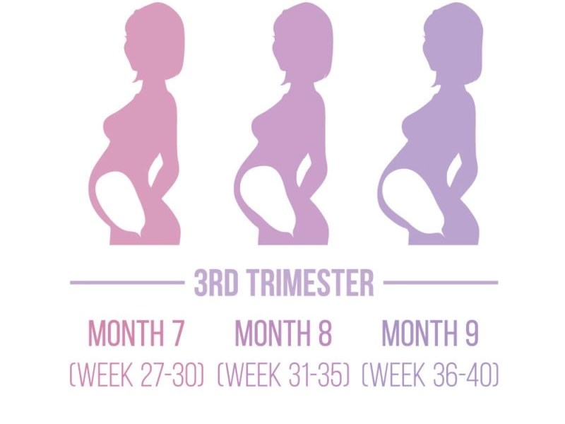 everything to know about third trimester