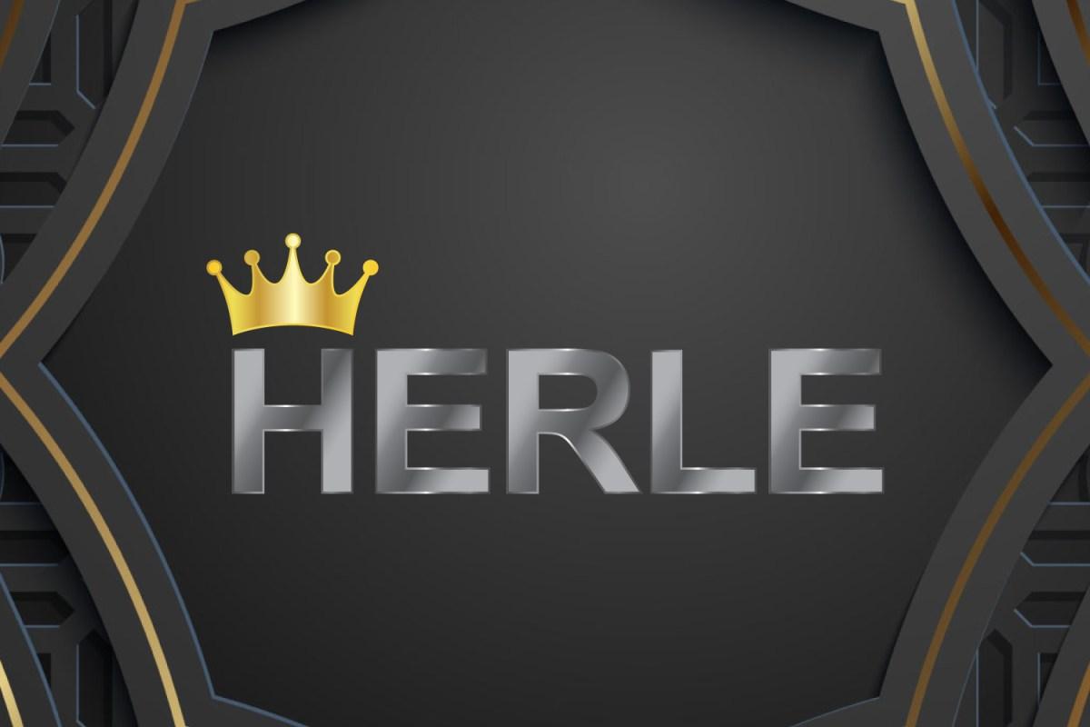 CryoDragon Kitchener Waterloo Logo Design HERLE Shop