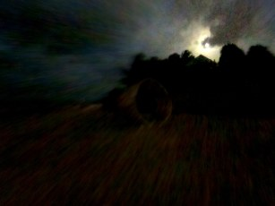 Moon_Saying_Goodnight