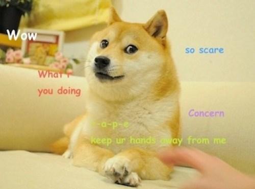 Dogecoin vs. Shiba Inu - Battle of the Memecoins