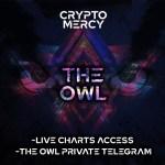 The-OWL-private-Telegram-crypto-mercy