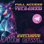 The_OWL_Telegram_Channel