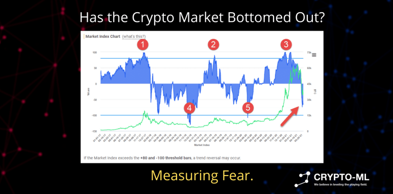 Has the Crypto Market Bottomed Out Measuring Fear
