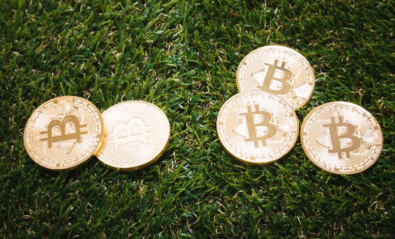 Miss Bitcoinブロックチェーン特化型人材支援会社設立。日本初の仮想通貨・ブロックチェーン企業限定合同企業説明会開催決定!仮想通貨業界動向、求人関連最新ニュース速報