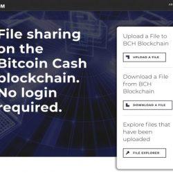 الإعلان عن الإطلاق الرسمي لموقع Bitcoinfiles.com