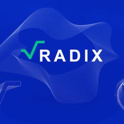 Radix .. هي أول شبكة blockchain من الطبقة الأولى مصممة خصيصًا لتطبيقات DeFi.