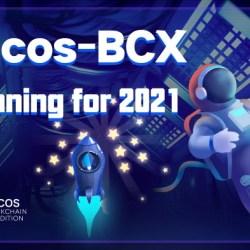 خطة COCOS-BCX لعام 2021
