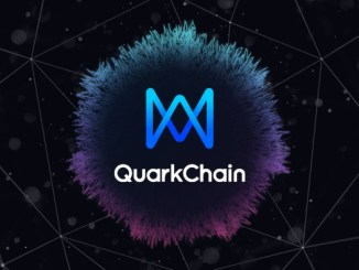 QuarkChain Bounty Program Tutorial - 1 Million QKC Rewards In Bounty Program