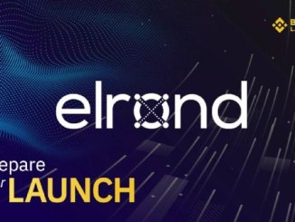 Elrond Token Sale Details On Binance Launchpad - How To Join And Buy Elrond (ERD) Token?