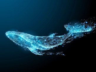 Crypto Transaction Tracking Service Whale Alert Announces Version 2