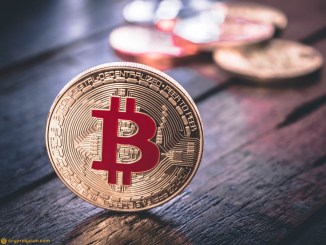 BTC Institutional Traders Exit Crypto As Retail Investors Bought the Dip - Coin Metrics