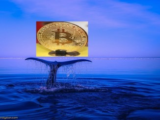 Whale Transfers $367M Worth of Bitcoin in Crypto Shuffle