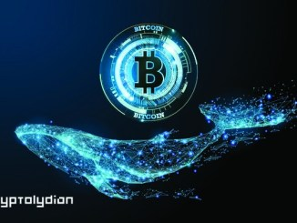 Bitcoin (BTC) Whales Shift Direction as Halving Approaches