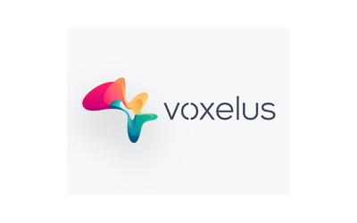 ما هو الـ Voxel والـ Voxelus ؟